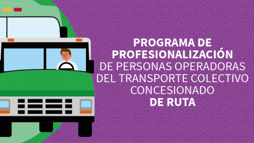 Profesionalización Transporte Colectivo